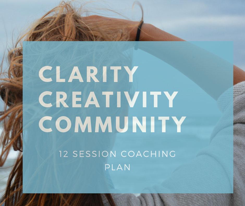 12 Session Coaching Plan
